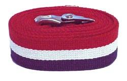 48-inch-patriot-stripe-gait-belt-4