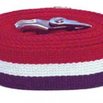 60-inch-patriot-stripe-gait-belt-4
