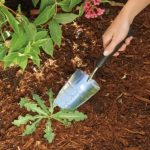 Garden Trowel by OXO Good Grips